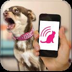 Dog Teaser 2.1 Apk