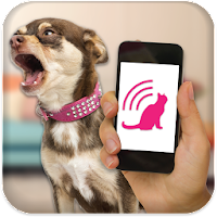 Dog Teaser 2.2