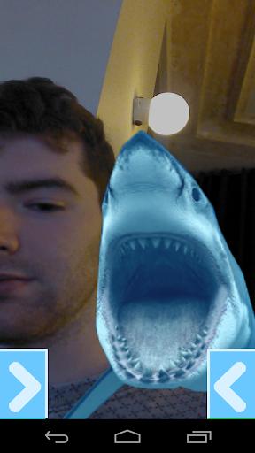 Selfie With A Shark