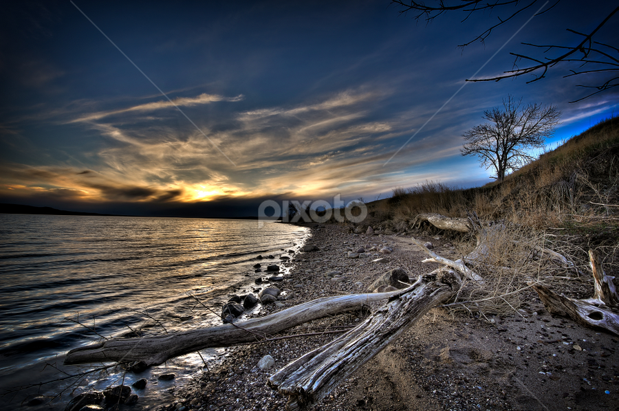 Driftwood by Bob Grandpre - Landscapes Waterscapes ( sand, driftwood, bluffs, missouri, sunset,  )