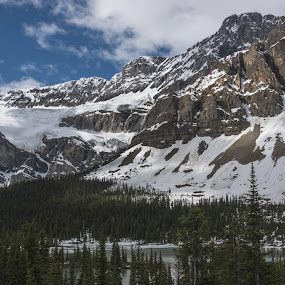 A June Day in the Canadian Rockies by Gerda Grice - Landscapes Mountains & Hills ( snow capped, blue sky, alberta, canada, white clouds, rocky mountains, trees, sunlight, mood, mood factory, holiday, christmas, hanukkah, red, green, lights, artifical, lighting, colors, Kwanzaa, blue, black, celebrate, tis the season, festive )
