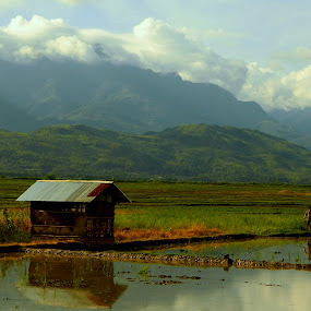 farmer and his field.... by Shambaditya Das - Novices Only Landscapes ( #nature, #greenery, #countryside, #farmer, #india,  )