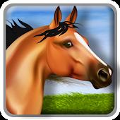3D Horse Simulator