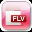 FLV Player icon