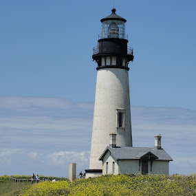 Lighthouse near Tillamook, OR by Dorothy Valine Gram - Buildings & Architecture Public & Historical