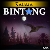 Novel Cahaya Bintang