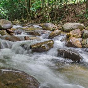 Ulu Yam by Bernice Then - Nature Up Close Water (  )