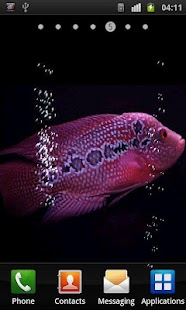 Aquarium Flowerhorn LWP - screenshot thumbnail