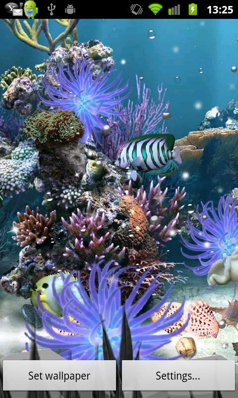 Coral Reef Live WP - screenshot