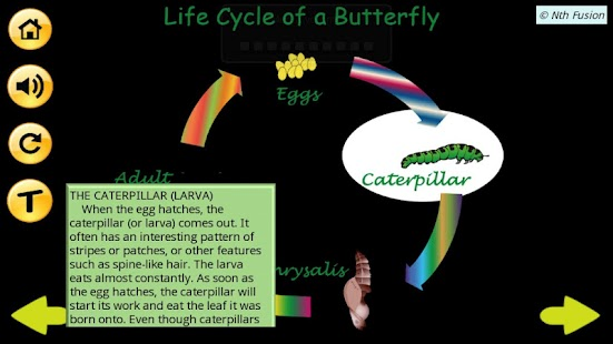 A Life Cycle App - screenshot thumbnail