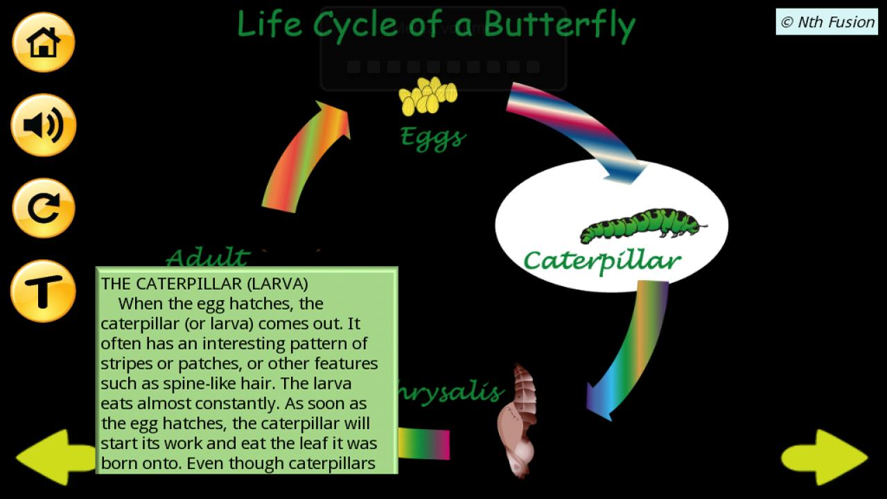 A Life Cycle App - screenshot