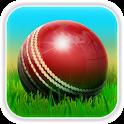 Cricket 3D icon