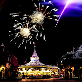 wishes by Brett Kurtz - City,  Street & Park  Amusement Parks ( wishes, walt, nola, by, show, disney, photos, fantasyland, charming, magic, kingdom, prince, florida, fireworks, carousel, orlando, world )