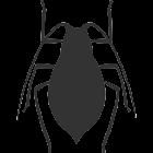 Stink Bugs icon