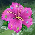 Aroma Clock icon