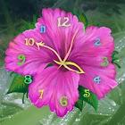 Aroma Clock 2x2 icon