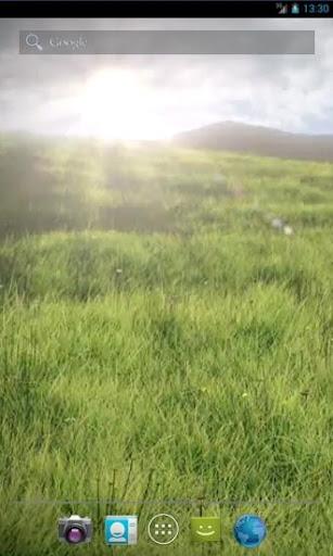 Realistic Grass Field LWP
