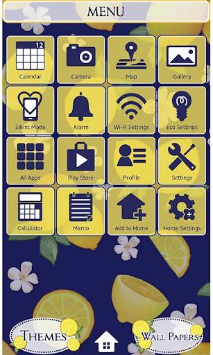 Summer Theme-Citrus Navy- 1.1 Windows u7528 2