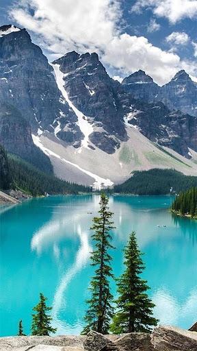Pretty Nature Live Wallpaper