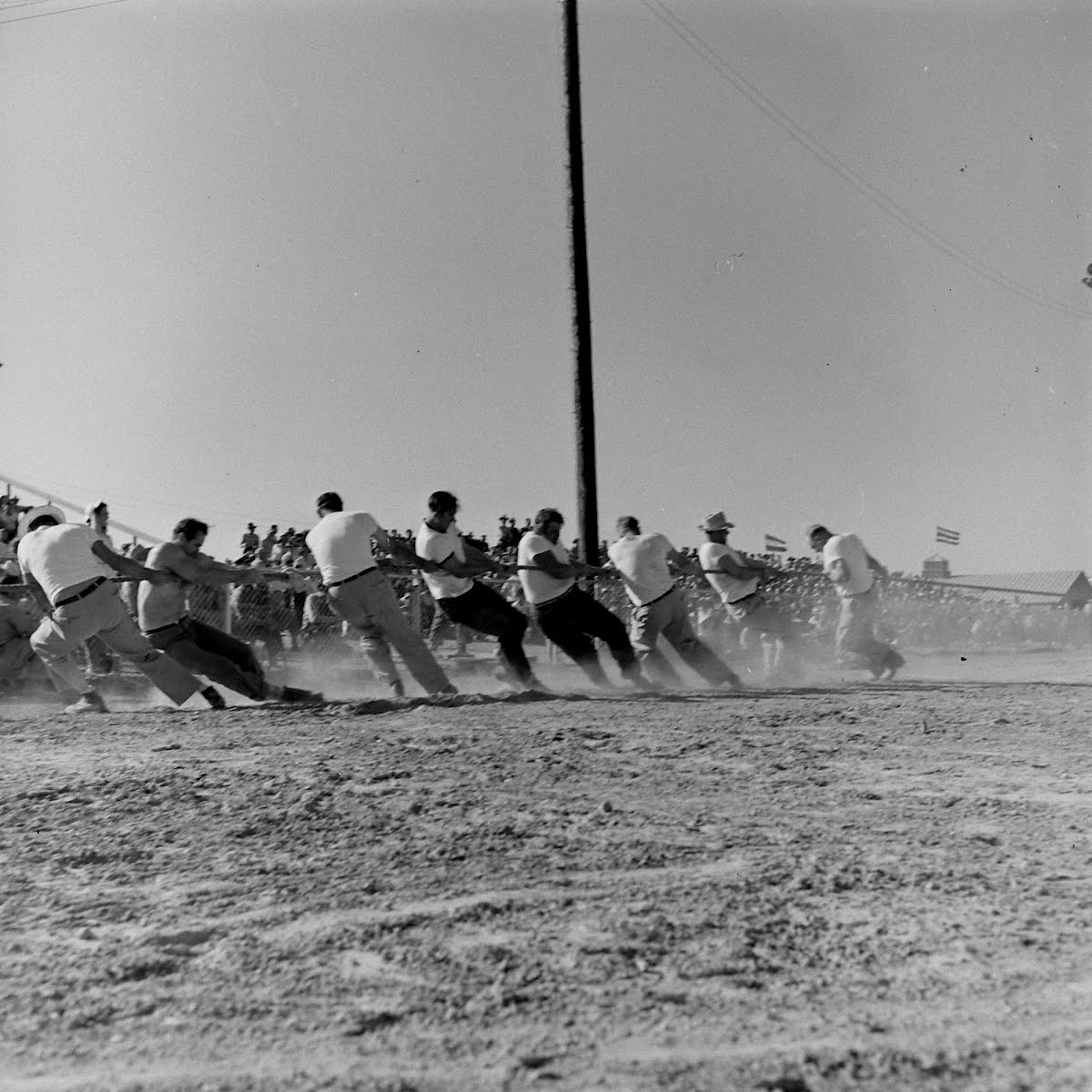 Antelope Valley Fair, Lanaster, California (Hay Loading Contest)