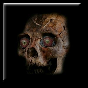 Skull Halloween FULL 休閒 App LOGO-硬是要APP