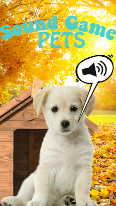 Sound Game with Fun Pets Photo- screenshot thumbnail