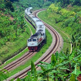 Argo Parahyangan by Husni Mubarok - Transportation Railway Tracks