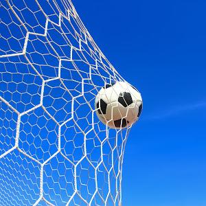 soccer ball in net.jpg