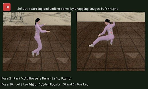 Tai Chi Yang 24 Form- screenshot thumbnail