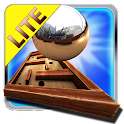 Crazy Labyrinth 3D - Lite icon