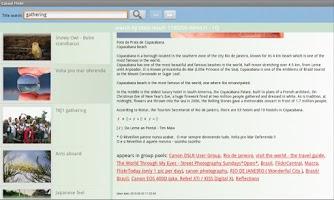 Screenshot of Casual Flickr