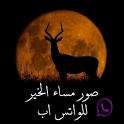 صور مساء الخير للواتس اب icon