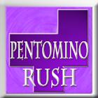 Pentomino Rush icon