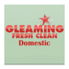 Gleaming Fresh Clean Domestic icon