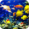 Beautiful underwater world icon