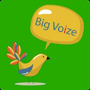 Big Voize