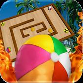 Survivor Fire Ball Maze 3D