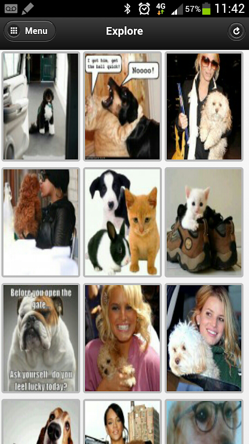 Pet Photos - POMP - screenshot