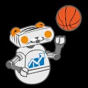 IDST Football & Basketball logo