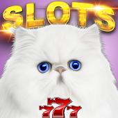 Casino Cash Cats - Slots PAID
