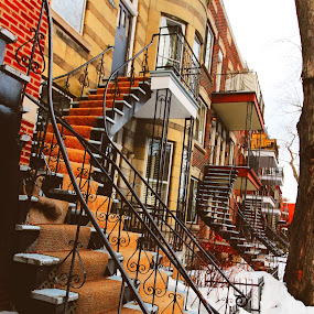 In Montreal Plateau by Faisal Abuhaimed - City,  Street & Park  Neighborhoods