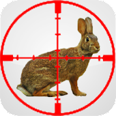 Rabbit Educational Call Hunt