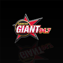 WGSQ 94.7 The Country Giant icon