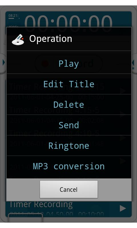 VoiceRecorder Pro- screenshot