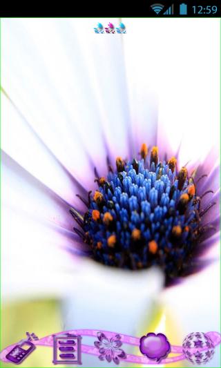 Flowers Theme Go Launcher EX - screenshot