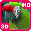 Amazing Bright Macaw Parrot icon