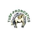 Turf-pronostics - resultat pmu icon