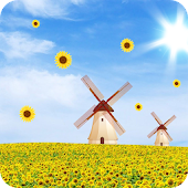 Sunflower Live Wallpaper FREE