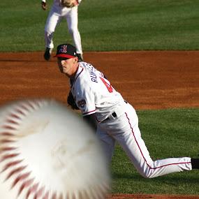 In Need of a New Lens by Keith Wood - Sports & Fitness Baseball ( kewphoto, harrisburg, baseball, senators, keith wood,  )