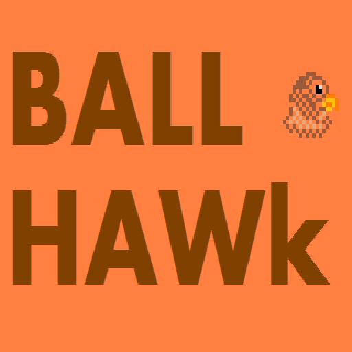 BallHawk 休閒 App LOGO-APP試玩